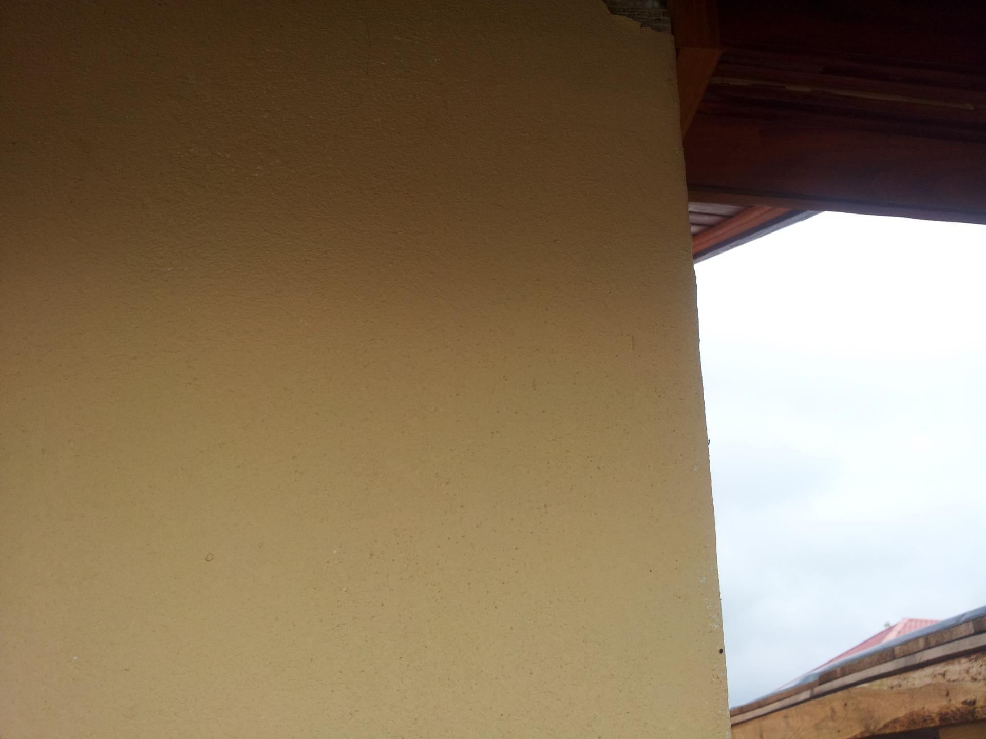 Caparol Tencuiala Decorativa.Caparol Carbon Edition Vs Ceresit Impactum Misiunea Casa