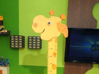Metru girafa