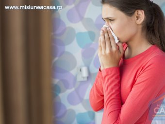 alergii in casa