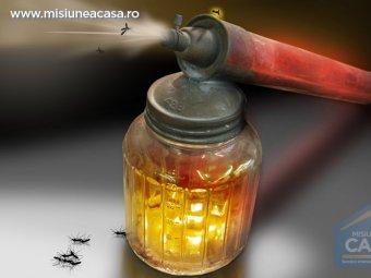 spray anti insecte