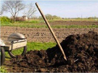 Fertilizarea solului