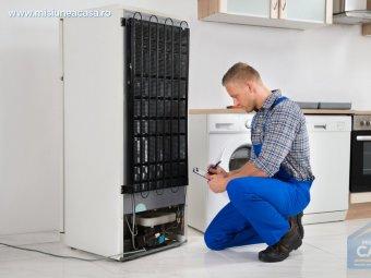 Inspectarea unui frigider de catre specialist