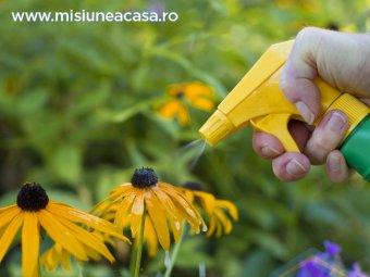 Pesticide pentru plante