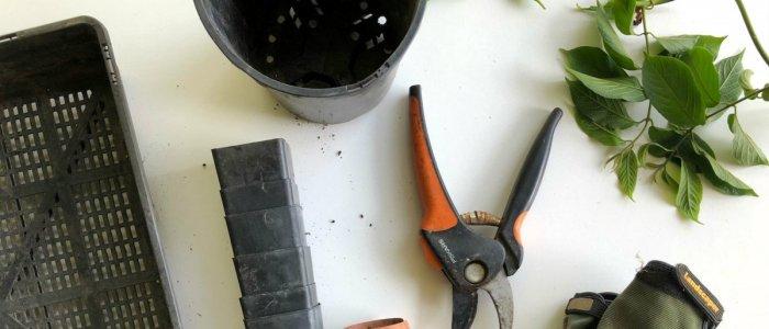 Proiecte DIY pentru gradina