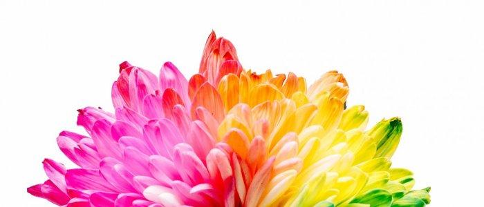 Culorile vor schimba lumea | Fuorisalone