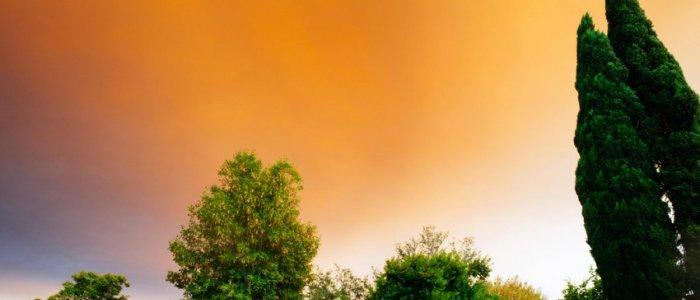 Panouri solare termice - cum le putem utiliza adecvat in timpul verilor caniculare pentru a maximiza beneficiile