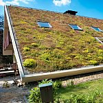 Gradina pe acoperis cu polistirenul Austrotherm