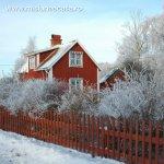 Ce materiale poti alege pentru fatada casei tale
