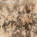 Cum prevenim aparitia mucegaiului in baie