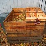 Ghidul gradinarului incepator: Cum preparam compostul in 3 pasi simpli
