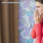 Sanatatea casei: Intrebari si raspunsuri cheie despre alergii (Partea I)