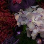 Targurile de flori ale lunii martie