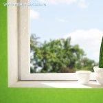 Cactusii – imbinarea dintre practic si estetic