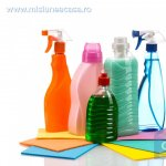 Cele mai non-toxice metode de a curata locuinta: Partea I