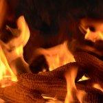 Cititorii ne recomanda: Incalzirea cu stiuleti de porumb