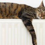 Cum reduci factura la caldura – Recomandari de la profesionisti