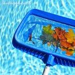 Cum sa mentii curata apa din piscina in doar 5 pasi