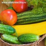 Luna iulie in gradina - ce recoltam si ce plantam