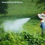 Pesticidele (Partea a II-a): Ce optiuni alternative avem?