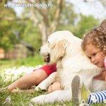 Rase de caini potrivite pentru copii