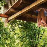 Casuta in copac – O surpriza inspirata pentru Ziua Copilului