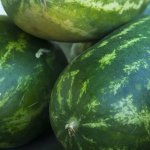 Pepenele rosu: De ce este indicat sa mancam semintele si cum recunosti fructele tratate chimic