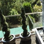 Peretii de apa: solutia stilata pentru a trece mai usor de perioada caniculara