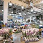 Praktiker Romania redeschide astazi doua magazine remodelate, in Ploiesti si Oradea