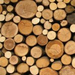 Procesarea lemnului de foc in epoca mecanizarii rapide