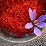 Sofranul: sfaturi de plantare si intretinere ale celui mai scump condiment din lume