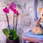 Cum sa amenajezi camera copiilor – Sfaturi si idei
