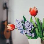 Cum sa mentii florile proaspete in vaza mai mult timp