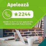 Leroy Merlin: La un an de la lansarea serviciului in Romania, comenzile telefonice au devenit unul dintre cele mai utilizate canale de cumparaturi
