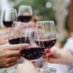 Miele: cererea de racitoare de vin s-a triplat anul acesta
