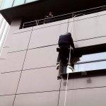 Plase Anti-insecte pentru Tamplarie din PVC - Aluminiu sau Lemn Stratificat