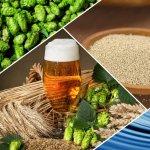 Rutina post-alergare: echilibru intre aportul si pierderile de lichide, consum de carbohidrati si proteine