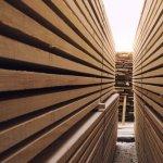 Tipuri de cherestea pentru constructii - despre clasificare, umiditate, tratamente, costuri si sortimente de lemn pentru constructie III