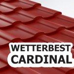 Wetterbest lanseaza profilul Cardinal - solutia pentru acoperisuri simple si complexe